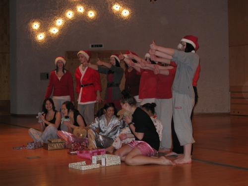 ES1c on Aestheticians programme at Anderstorpsskolan in Skellefteå, Sweden has invited on a very nice Christmas dance.