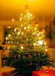 Christmas tree - Malene Thyssen, http://commons.wikimedia.org/wiki/User:Malene