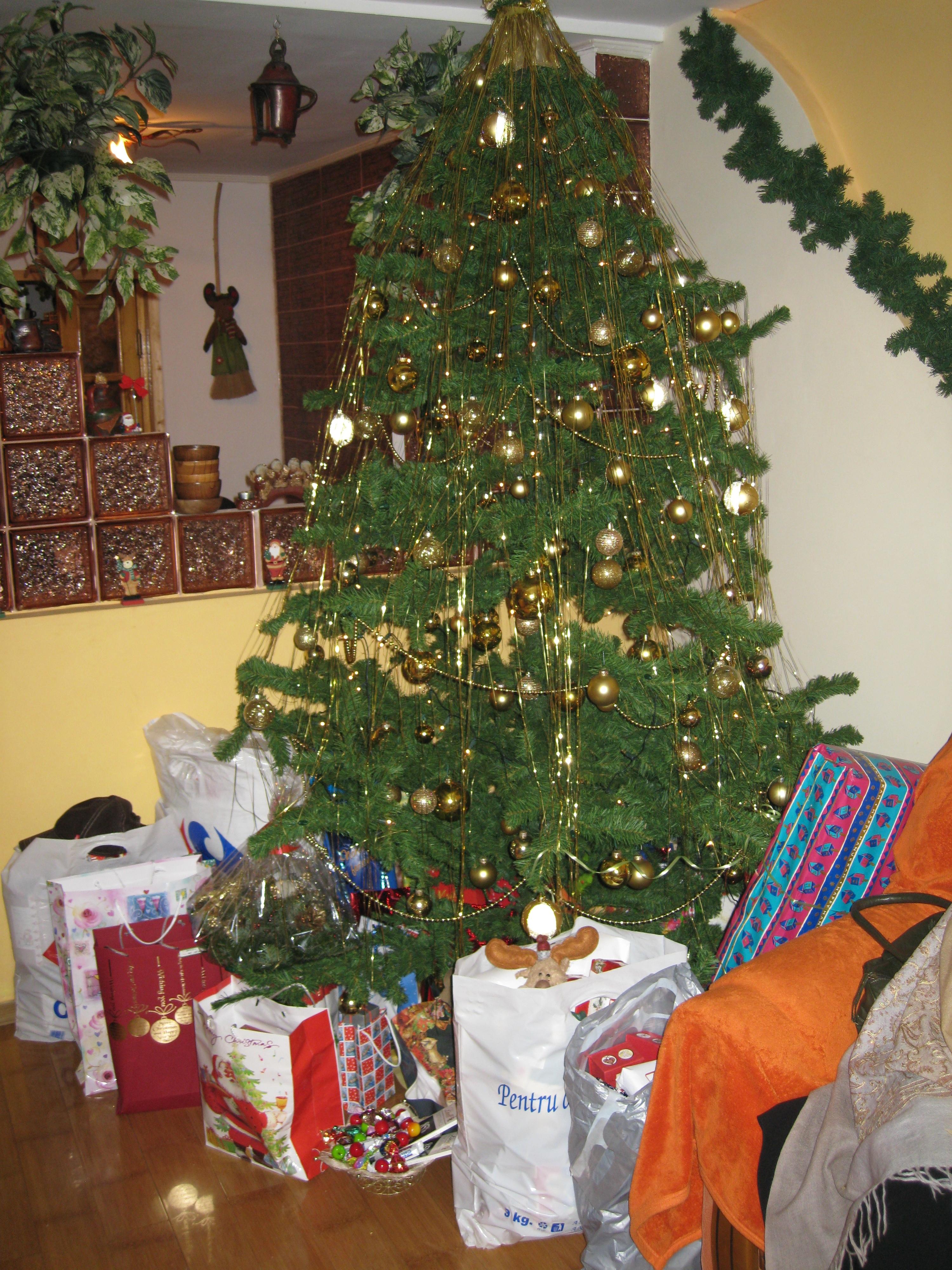 romanian christmas tree christmas 2009 iasi romania - European Christmas Tree