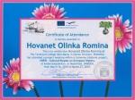 Olinca Hovanet, student at Technical College Iuliu Maniu - Simleu Silvaniei, Romania