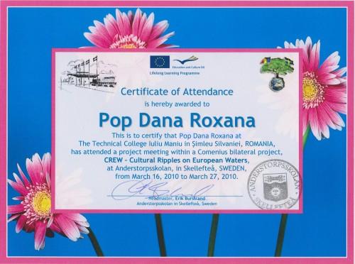 Roxana Dana Pop, student at Technical College Iuliu Maniu - Simleu Silvaniei, Romania