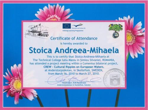 Andreea-Mihaela Stoica, student at Technical College Iuliu Maniu - Simleu Silvaniei, Romania