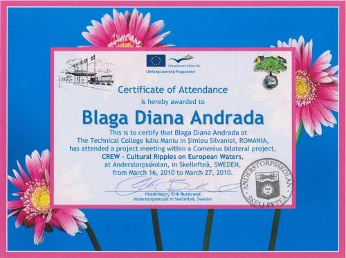 Diana Andrada Blaga, student at Technical College Iuliu Maniu - Simleu Silvaniei, Romania
