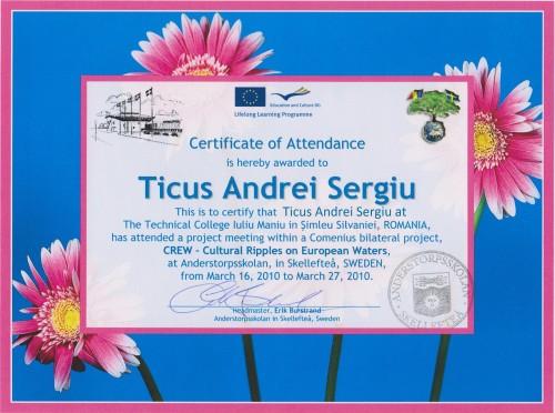 Andrei Sergiu Ticus, student at Technical College Iuliu Maniu - Simleu Silvaniei, Romania